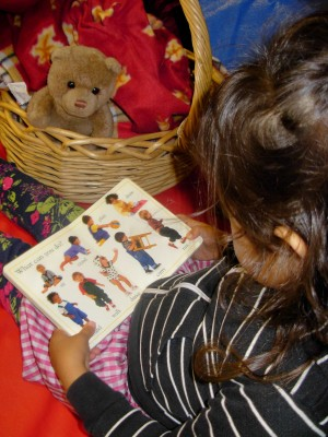 Reading with the Bear Basket